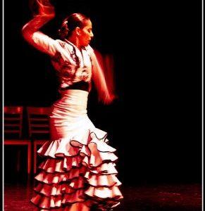 flamenco_l